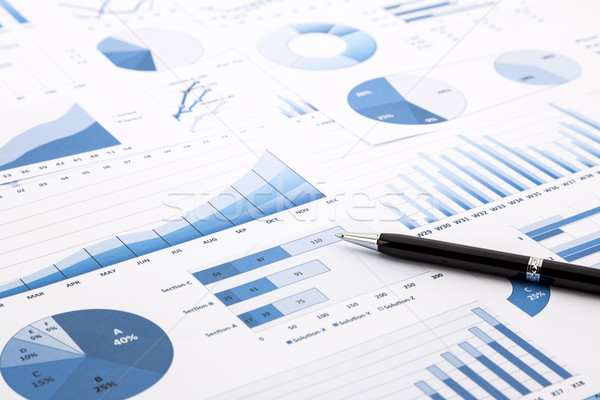 blue charts, graphs, data and reports  Stock photo © vinnstock