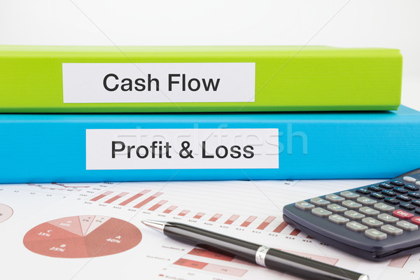 Cash Flow, Profit & Loss documents with reports  Stock photo © vinnstock
