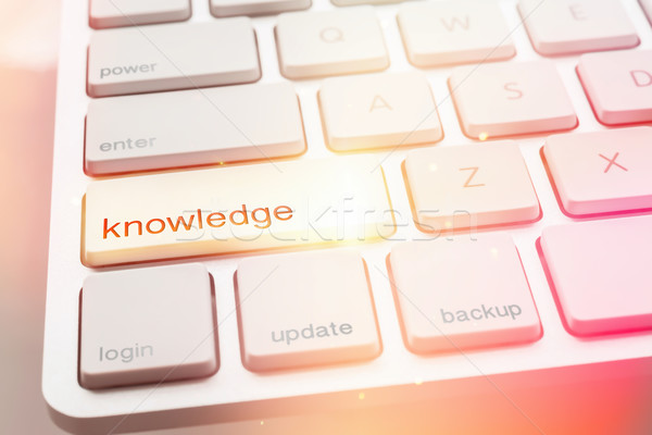 Light from KNOWLEDGE button of computer keyboard  Stock photo © vinnstock