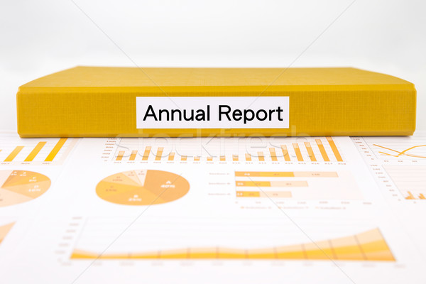 Business annual report, graphs, charts and project evaluation do Stock photo © vinnstock