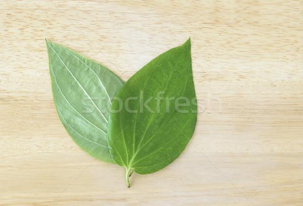 листьев студию свежие Индия традиция Сток-фото © vinodpillai