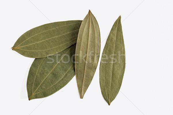 Indiai babérlevél aszalt levelek étel természet Stock fotó © vinodpillai