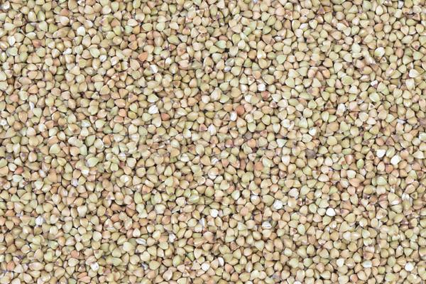 種子 生 シード 健康 ブラウン ストックフォト © vinodpillai