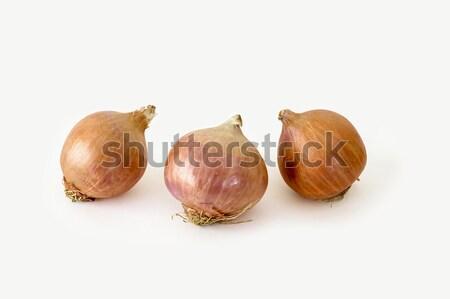 Onions on white Stock photo © vinodpillai