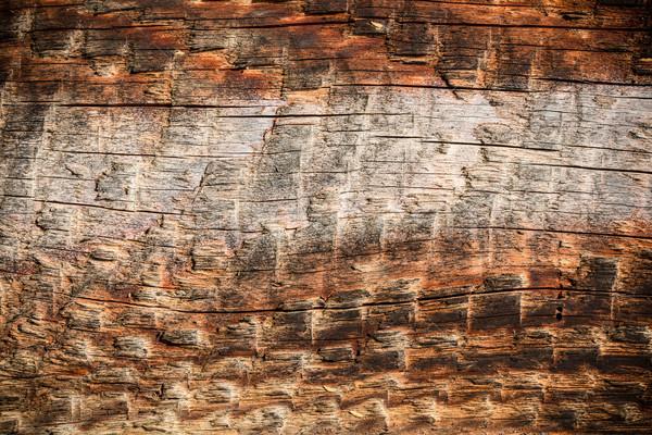 Klasszikus viharvert fából készült palánk textúra fa Stock fotó © viperfzk