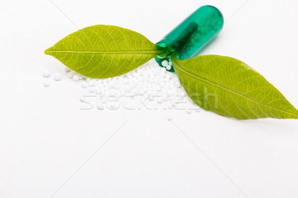 открытых капсула зеленый лист растущий из зеленый Сток-фото © viperfzk