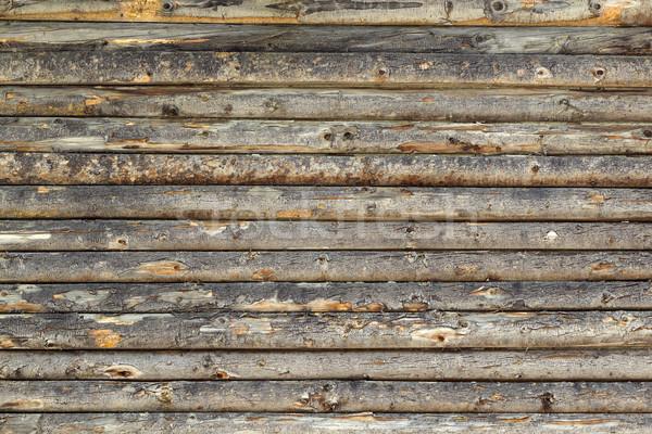 Viharvert fa grunge elemek fal sötét Stock fotó © viperfzk