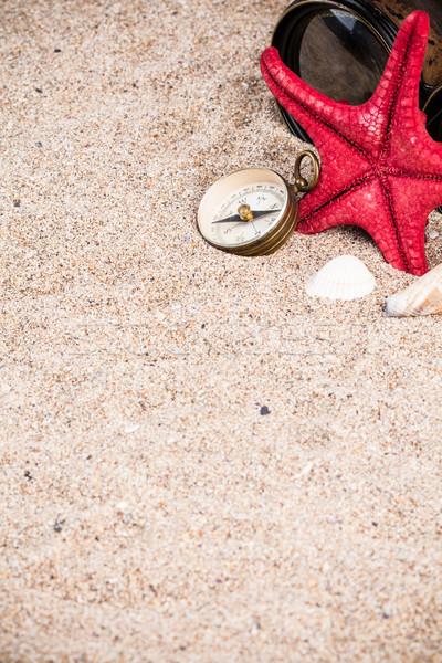 морем снарядов Starfish природы дизайна кадр Сток-фото © viperfzk