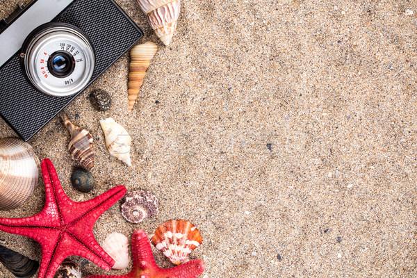 Tenger kagylók tengeri csillag fotó gép homok Stock fotó © viperfzk