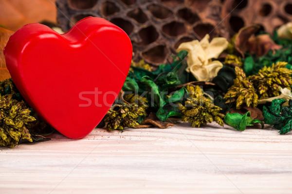 クール 植物 花 赤 中心 ストックフォト © viperfzk