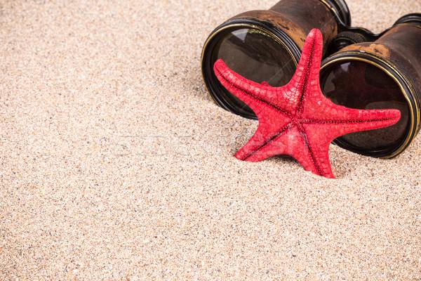 Tengeri csillag látcső homok piros homokos természet Stock fotó © viperfzk