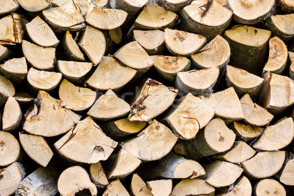Stockfoto: Gehakt · drogen · brandhout · textuur · hout · bos