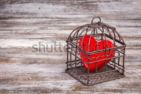 Heart in cage in the snow landscape view Stock photo © viperfzk