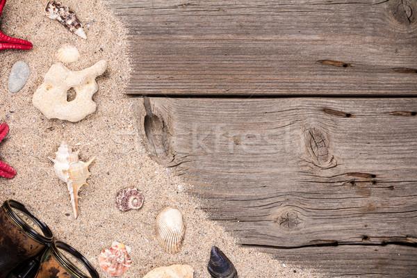 Zee schelpen zanderig houten zeester natuur Stockfoto © viperfzk