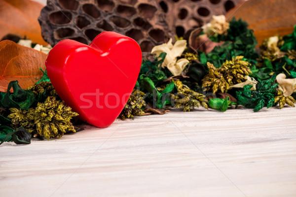 Valentin nap zöld barna aszalt növények virágok Stock fotó © viperfzk