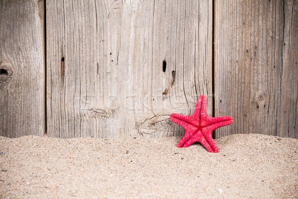 Starfish песок старые забор песчаный Сток-фото © viperfzk
