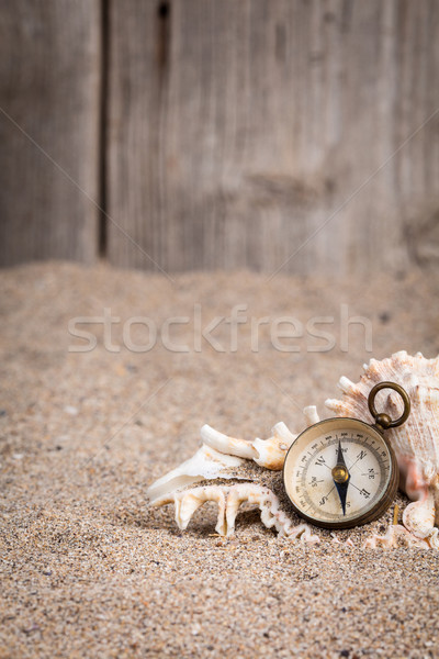 Bağbozumu pusula ahşap çit kumlu kabuk Stok fotoğraf © viperfzk