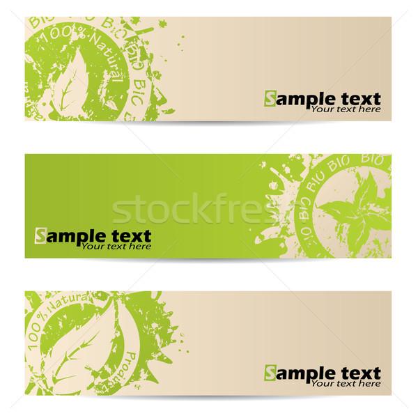 Bio szalag szett levél fóka terv Stock fotó © vipervxw