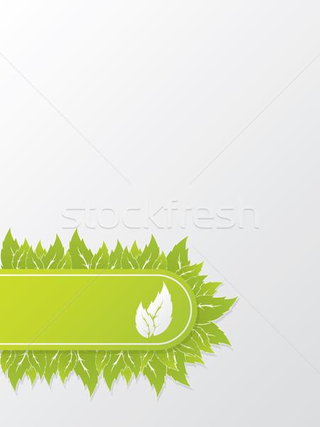 Abstract ecologico brochure design foglie verdi foglia Foto d'archivio © vipervxw