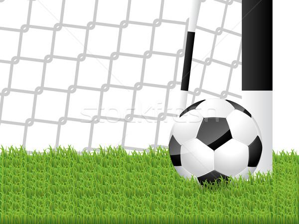Classic soccer ball in grass Stock photo © vipervxw