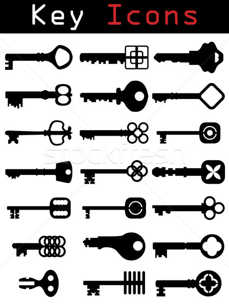 Key Icon set  Stock photo © vipervxw