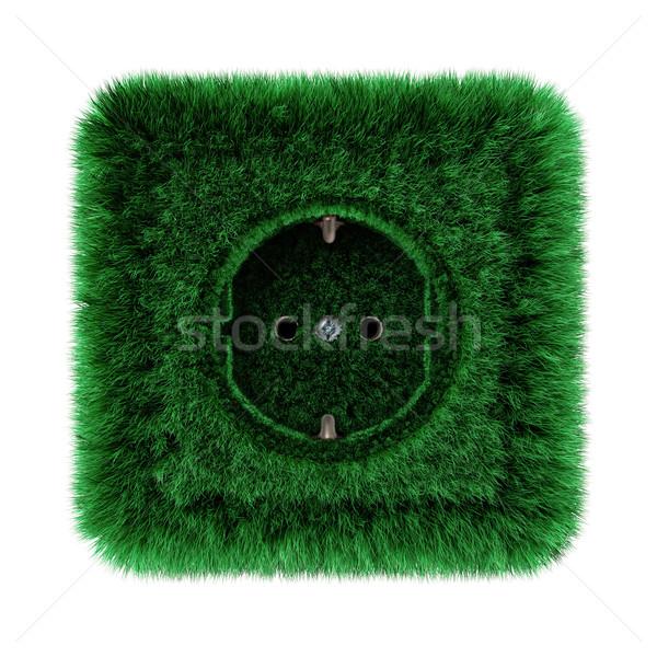 Foglalat fedett zöld fű természet háttér hálózat Stock fotó © visdia