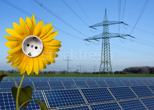 Solar park, sunflower with socket and power line Stock photo © visdia
