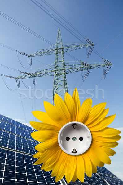 Solar panels, sunflower with socket and utility pole Stock photo © visdia