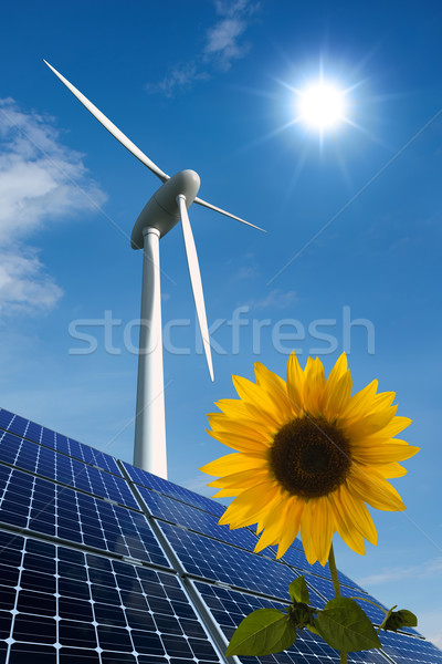 Solar panels, wind turbine and sunflower against a sunny sky Stock photo © visdia
