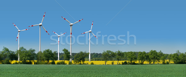 Wind turbines in a rapeseed field behind an alley Stock photo © visdia