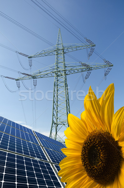 Solar panels, sunflower and utility pole with wires Stock photo © visdia