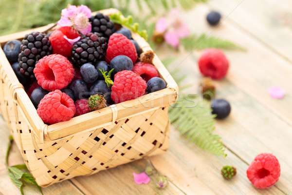 Fresh forest berries. Stock photo © Vitalina_Rybakova