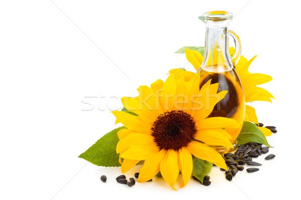 óleo de girassol girassóis girassol sementes isolado branco Foto stock © Vitalina_Rybakova