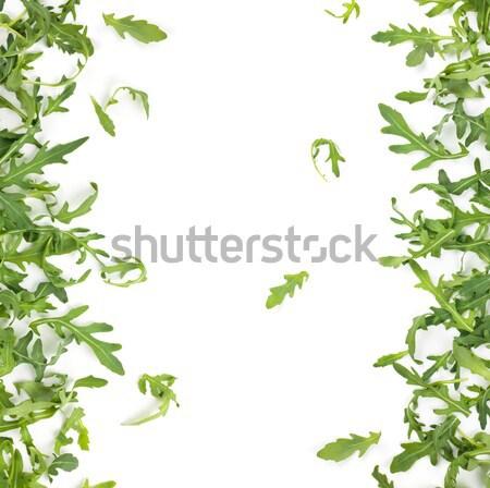 Stockfoto: Vers · bladeren · geïsoleerd · witte · blad · frame