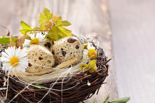Bloemen eieren nest houten Pasen bloem Stockfoto © Vitalina_Rybakova