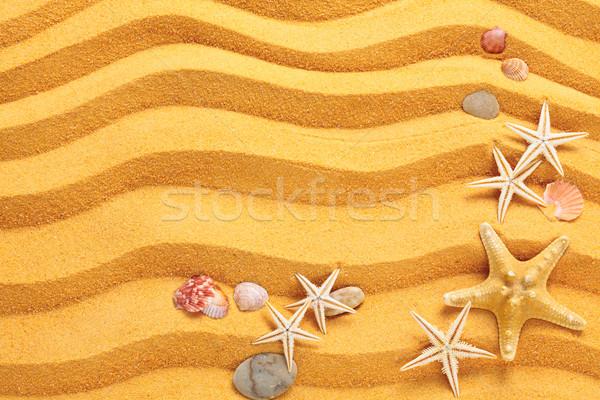 Yellow sand and seashells background. Stock photo © Vitalina_Rybakova
