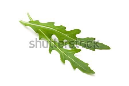 Vers bladeren geïsoleerd witte natuur salade Stockfoto © Vitalina_Rybakova