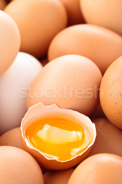 Vers eieren shot kip voorjaar Stockfoto © Vitalina_Rybakova