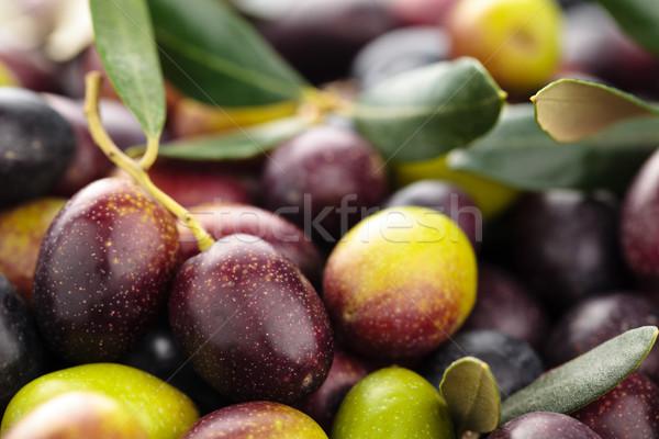 Vers olijven groene zwarte olijven bladeren textuur Stockfoto © Vitalina_Rybakova