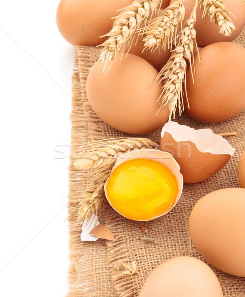Vers kip eieren shot geïsoleerd Stockfoto © Vitalina_Rybakova
