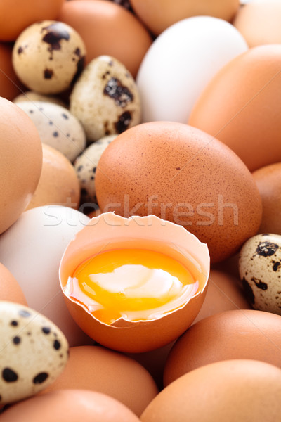 Vers eieren shot kip voedsel Stockfoto © Vitalina_Rybakova