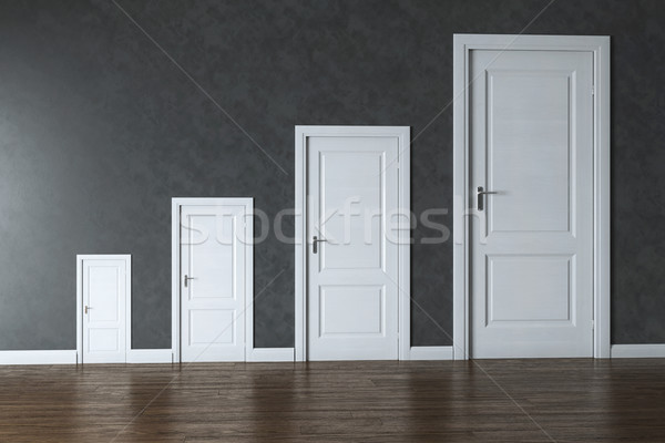 Conceptual Interior Picture - Rage Of Doors Stock photo © vizarch