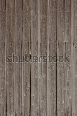 Wooden background Stock photo © vizualni
