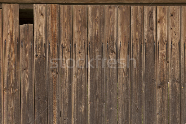 Wooden wall with cathole Stock photo © vizualni