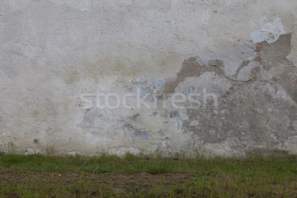ストックフォト: 緑 · ベッド · みすぼらしい · 壁 · 草 · 石膏