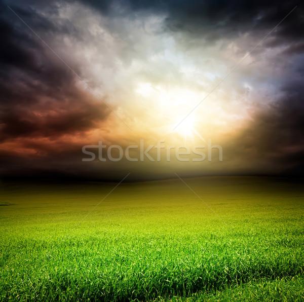 Sötét égbolt zöld mező fű nap Stock fotó © vkraskouski