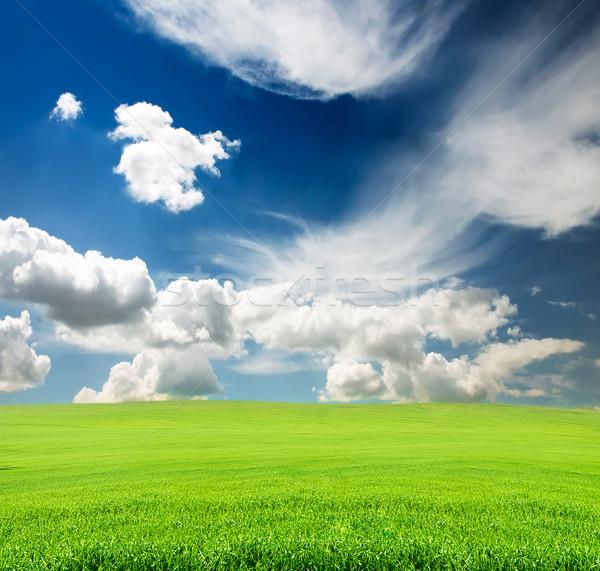 égbolt zöld fű mező kék felhős nyár Stock fotó © vkraskouski