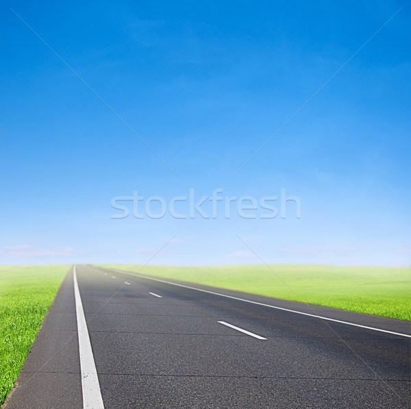Carro estrada blue sky verde campo acelerar Foto stock © vkraskouski