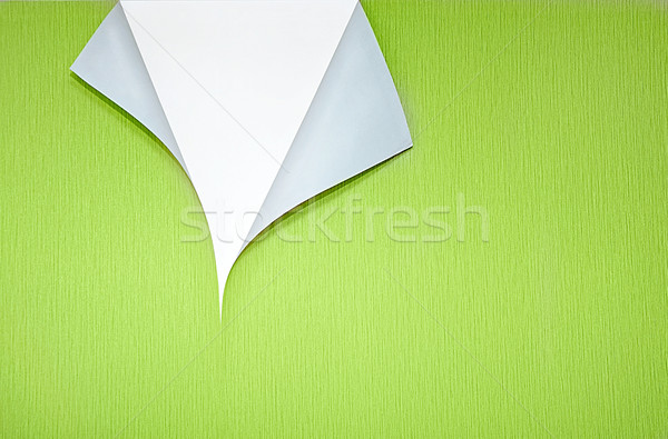 Papel de parede canto cópia espaço verde branco Foto stock © vkraskouski