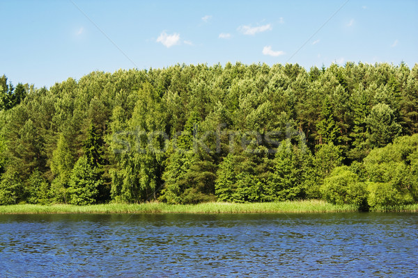 lake Stock photo © vkraskouski
